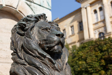 Statue of bronze lion