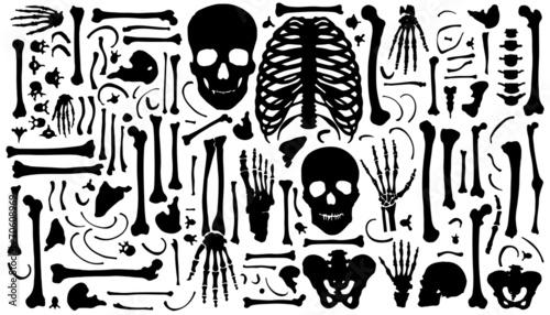 bone silhouettes - 70608969