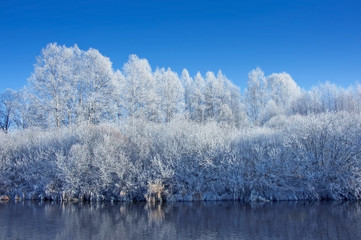 wintet river and frozen trese covered with ice