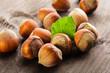 Hazelnuts heap