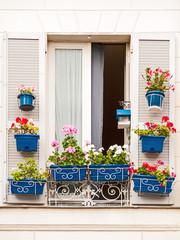 Fenster mit blauen Blumenkästen