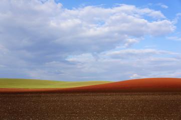 Landschaft Monokultur in Lothringen