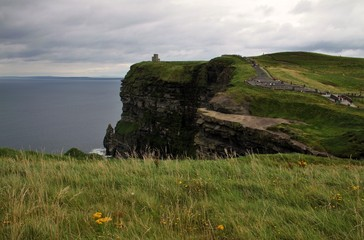 Green grass and Cliffs of Moher landscape, Ireland