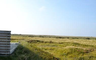 Blick vom Ferienhaus - Nordseeinsel Rømø