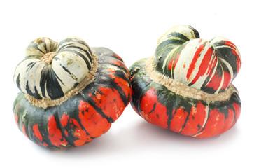 Bush Pumpkins
