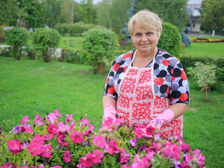 Senior woman in the garden showing colorful flowers