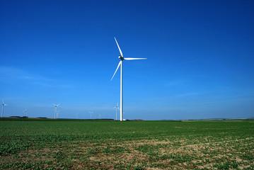 Groupe d'éoliennes en plein champs