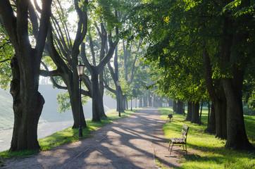 Belarus, Nesvizh. Sunny morning in the park
