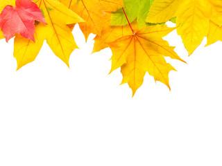 Herbstblätter als Hintergrund