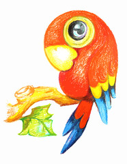 Colorful Parrot painting on white background