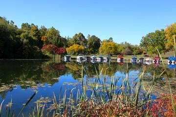 Early autumn in Michigan