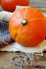 Осенние овощи, тыква