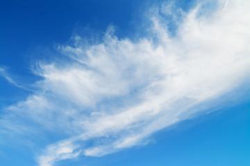 white stratiform clouds
