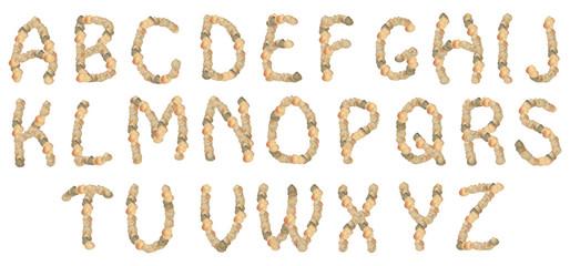 shell alphabet