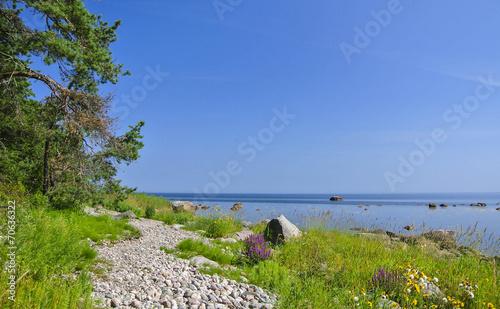 Leinwanddruck Bild Island trail in the hot sunny morning