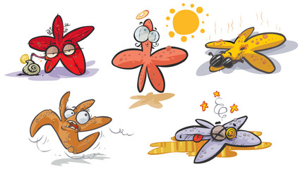 Starfish cartoon collection.