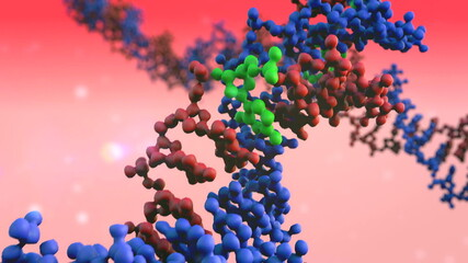 DNA, DNA animation