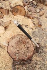 Ceppo per spaccare la legna con la scure