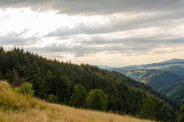 Sonnenstrahlen am Schwarzwald