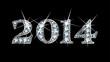 """Diamond Bling """"2014"""""""