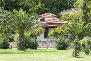 Summer holiday house with palm trees on lawn