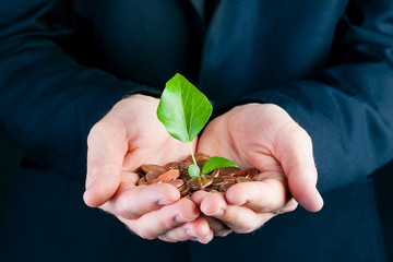 Business man holding seedling in his hands