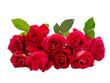 Obrazy na płótnie, fototapety, zdjęcia, fotoobrazy drukowane : Bouquet of Red Rose