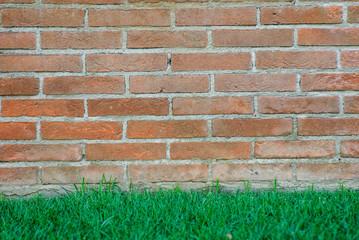 Muro di mattoni e prato, trama texture sfondo