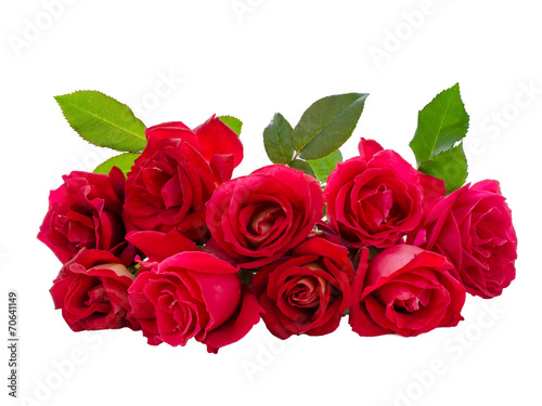 canvas print picture Bouquet of Red Rose
