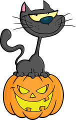 Halloween Black Cat On Pumpkin Cartoon Character