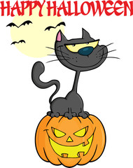Halloween Black Cat On Pumpkin Cartoon Character With Text