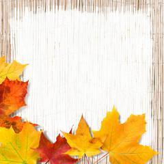 Ahornblätter, plakativer Hintergrund, Herbstanfang, Textfreiraum