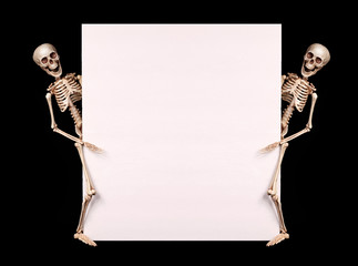 Skeletons holding empty blank over black background. Halloween