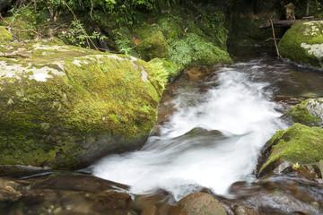 苔むした岩と奥十曽渓谷の沢