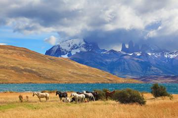 Chilean lake Laguna Azul.