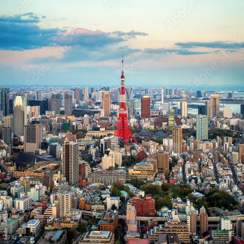 Fototapeta Tokyo city view visible on the horizon