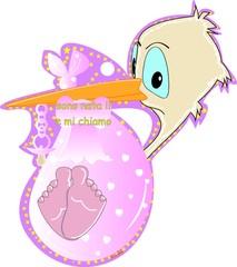 cicogna piccola rosa 001