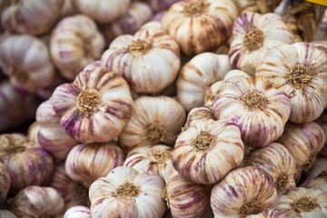 Garlic bunches in a market
