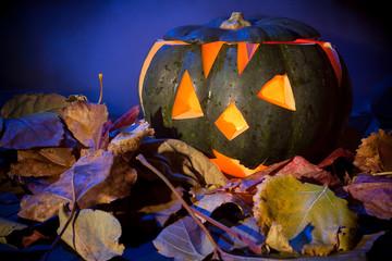 halloween pumpkin in the smoke background