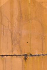 yellow rust