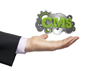 cms businessman