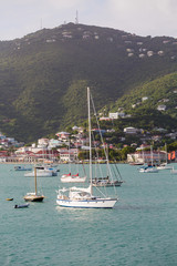 White Sailboats in St Thomas Bay Vertical