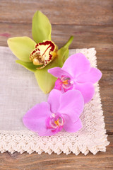 Pink tropical orchid flowers on wooden background