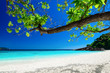 Tropical landscape of Similan islands, Thailand - 70660322