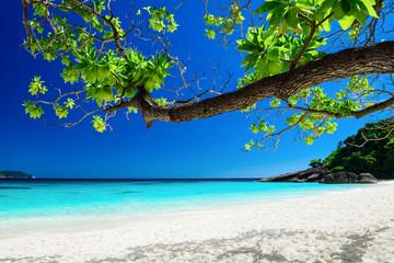 Tropical landscape of Similan islands, Thailand