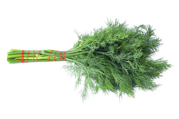 bunch of  dill isolated on a white background