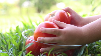 A red tomatoes are placed in a transparent glass