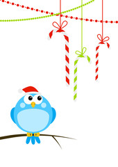 Cute little bird with Christmas candies