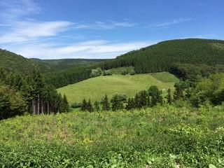 Grüne Gebirgslandschaft