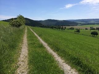 Weg am Berg
